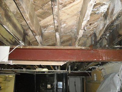 Mold Remediation - Before
